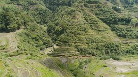 Rice terraces in the mountains. Philippines, Batad, Banaue. Aerial view of rice terraces on the slopes of the mountains, Banaue, Philippines. Rice cultivation Royalty Free Stock Photos