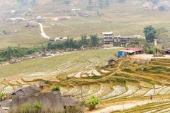 Rice terraces at the mountains in Tavan Village Sapa. Stock Photography