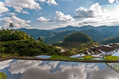 Rice-terraces near Poitan-village Royalty Free Stock Photo