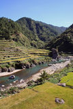Rice terraces river valley north luzon philippines. Beautiful landscape of river running through lush green rice terraces near sagada northern luzon the stock image
