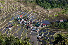 Rice Terraces, Philippine. Royalty Free Stock Photography