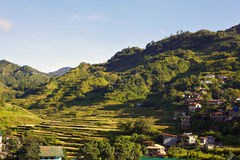 Rice terraces on Philippines Stock Image