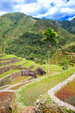 Rice terraces in the Philippines. Rice cultivation in the North Stock Images