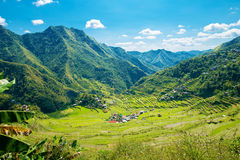 Rice terraces in the Philippines. The village is in a valley amo Stock Images