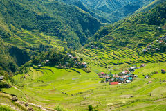 Rice terraces in the Philippines. The village is in a valley amo Royalty Free Stock Image