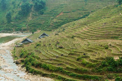 Rice terraces and river Stock Image