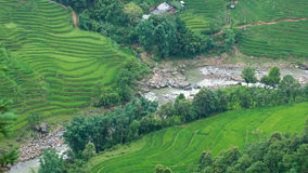 Rice terraces and river in Sapa Valley Royalty Free Stock Image