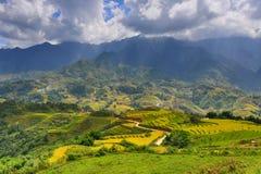 Rice terraces in Sapa, Vietnam. Season specific on September.harvesting period stock photos
