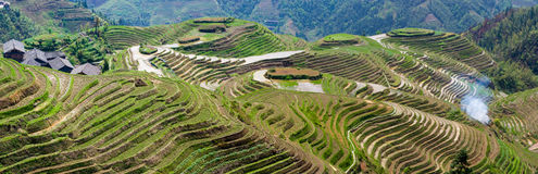 Rice Terraces in Southern China Stock Photo