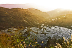 Rice Terraces at Sunset. Ancient rice terraces cover the mountainsides in Yuanyang at the Tiger's Mouth viewing area in southern Yunnan province in China Stock Image
