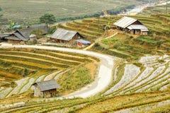Rice terraces in Tavan Village Sapa. Royalty Free Stock Photos