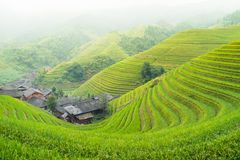 Rice terraces and traditional village Royalty Free Stock Image