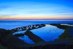 Rice terraces at twilight Royalty Free Stock Photography