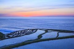 Rice terraces at twilight Stock Photos