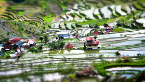 Rice terraces and village houses. Banaue, Philippines. Tilt shift stock photos