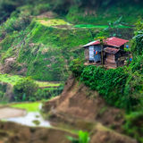 Rice terraces and village houses. Banaue, Philippines. Tilt shif Royalty Free Stock Photos