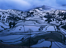 Rice terraces of yuanyang in the morning Stock Photos