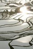 Rice terraces of yuanyang Royalty Free Stock Photo