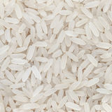 Rice texture Stock Photography