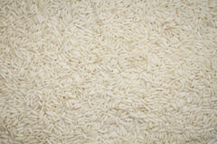 Rice texture. Natural texture of rice abstract background square shape Royalty Free Stock Image