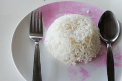 Rice Thailand Preparation for lunch Royalty Free Stock Photos