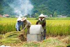 Rice threshing in Vietnam Stock Photos