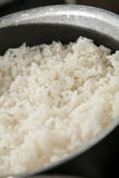 Rice to cooked Royalty Free Stock Images