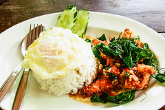 Rice topped with stir-fried pork and basil.  royalty free stock photo