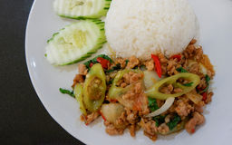 Rice topped with stir-fried pork and basil Stock Images
