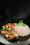 Rice topped with stir fried pork and basil Stock Photography
