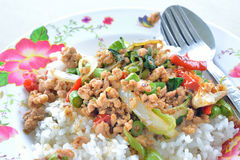 Rice topped with stir fried pork and basil. Traditional Thai food royalty free stock image