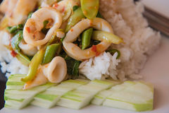 Rice topped with stir-fried squid and basil On the plate Stock Images