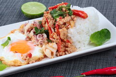 Rice topped with stirred  minced-pork ,squid ,basil and fried egg(sunny up) on black napery. Selective focus. Royalty Free Stock Photos