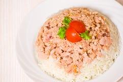 Rice with tuna Royalty Free Stock Photos