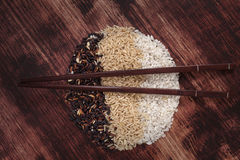Rice variation. Stock Photos