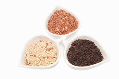 Rice varieties,wheat,brown rice, Royalty Free Stock Photo