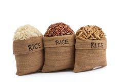 Rice Stock Image