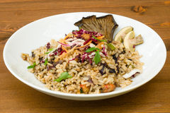 Rice with various vegetables and shrimps Royalty Free Stock Photography