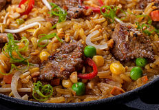 Rice and veal meat slice Royalty Free Stock Photo