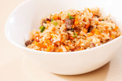 Rice with vegetables Royalty Free Stock Photo
