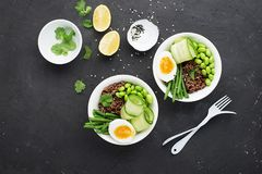 Rice vegetables bowl. Red fragrant jasmine rice with soybeans edamame, thin string beans, fresh cucumbers, zucchini and Royalty Free Stock Images