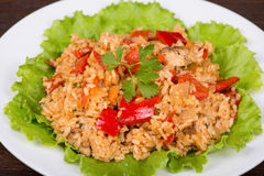 Rice with vegetables and chicken Royalty Free Stock Photo