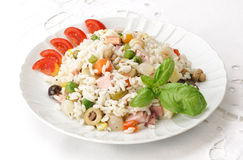 Rice and vegetables on plate Stock Image