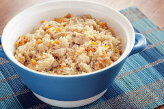 Rice with vegetables and spices Royalty Free Stock Image