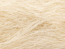 Rice vermicelli Royalty Free Stock Photo