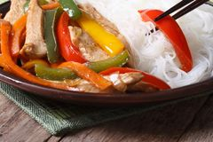 Rice vermicelli with chicken and vegetables. macro Royalty Free Stock Photography