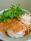 Rice vermicelli Royalty Free Stock Image