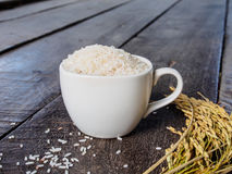 Rice w filiżance i kolec dalej woofen Zdjęcie Royalty Free