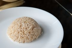 Rice W karmowym przewoźniku, Jusmin lał się ryż w części karmowy carr Obrazy Stock