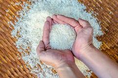 Rice w ręce Obfitość ryż w ręce Obrazy Royalty Free